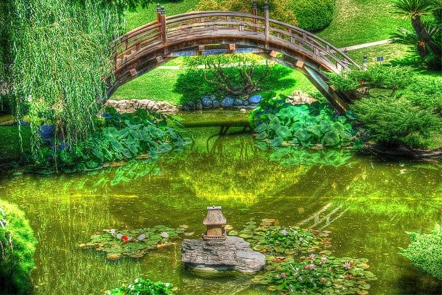 Top 5 muzee din Los Angeles botanical garden