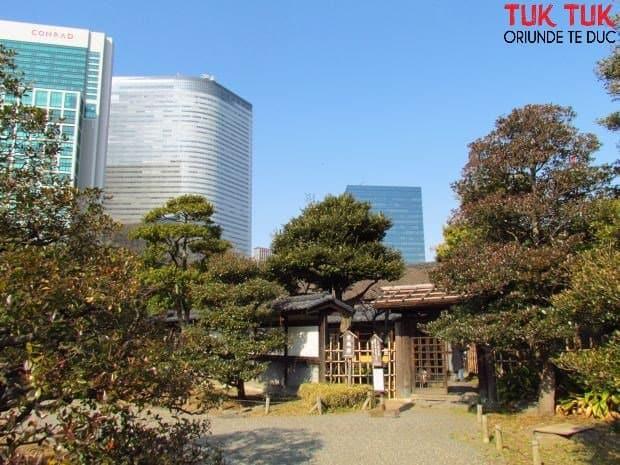 Tokyo: Gradina Hama-rikyiu casa ceaiului wm