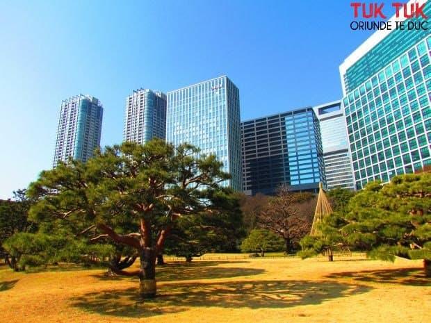 Tokyo: Gradina Hama-rikyiu garden wm