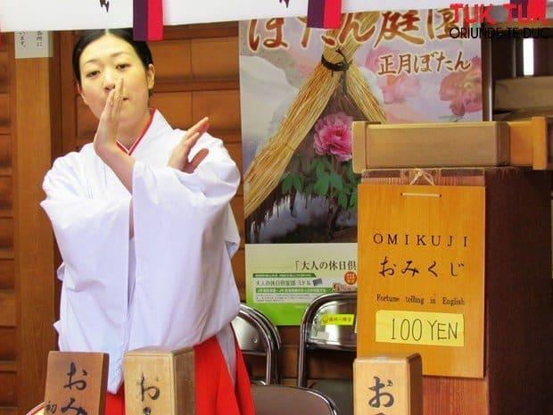 Kamakura – altarul shinto Tsurugaoka Hachimangu si strada Komachi IMG 1159