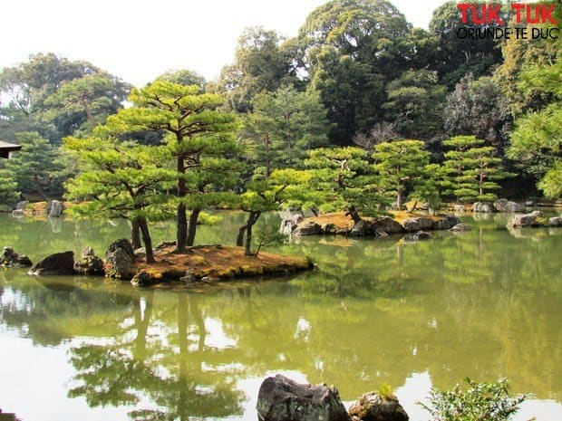 Kyoto: Ginkakuji - Pavilionul de Argint si Kinkakuji - Pavilionul de Aur IMG 2120