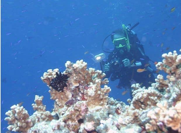 8 super-destinatii pentru amatorii de scuba diving marea bariera