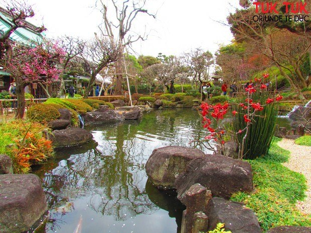 Foto: Colours of Japan IMG 1340