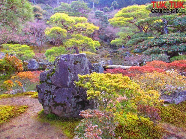 Foto: Colours of Japan IMG 1997