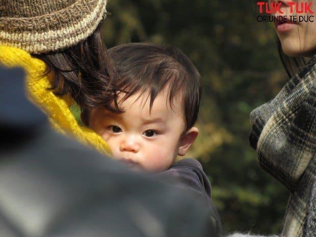 Foto: Faces of Japan IMG 2131