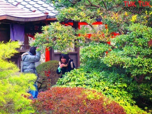 Foto: Colours of Japan IMG 2189