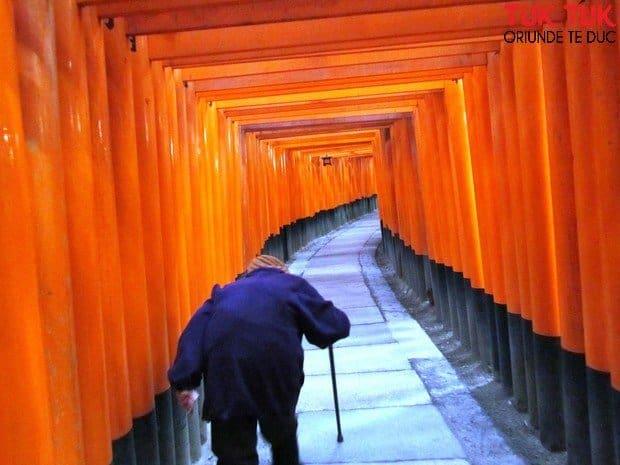 Foto: Faces of Japan IMG 2612