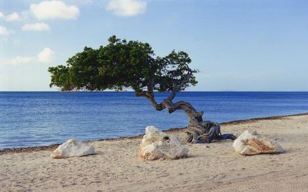 Cele mai bune 25 plaje din lume eagle beach aruba