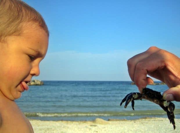 Concurs HP: castigatoarea si Top 20 fotografii alex si crabu