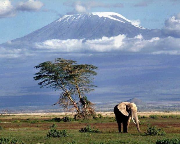 Kenya, optiunea perfecta pentru safari amboseli1