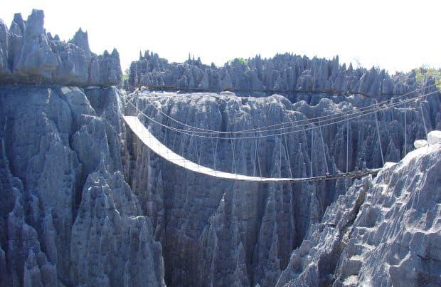 Padurea de piatra din Madagascar padurea de piatra1