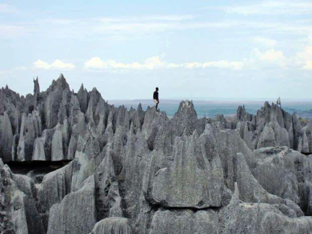 Padurea de piatra din Madagascar padurea de piatra5