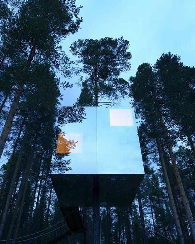 Hoteluri cool: Treehotel, Suedia treehotel9