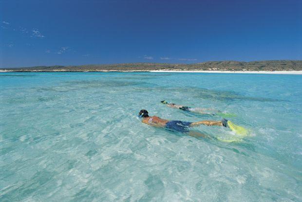 Top 10 locuri ideale pentru snorkeling Ningaloo Reef
