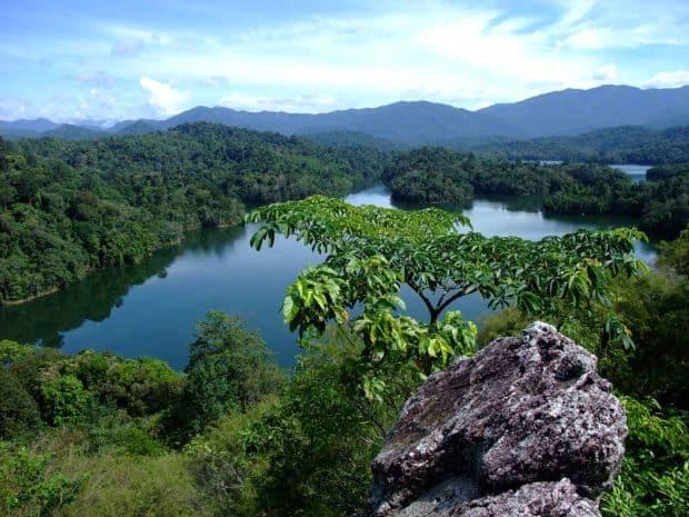 Top 10 locuri de vazut in Malaezia cu bani putini taman negara