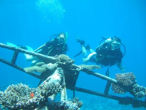 Sharm el-Sheik Sharm El Sheikh, destinația perfectă pentru scuba diving sharm