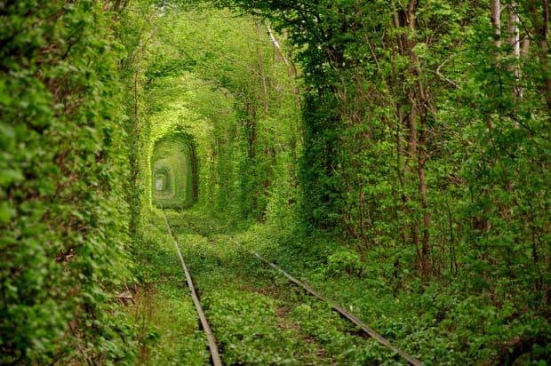 Kiev Lucruri pe care le poti face in Kiev tunelul iubirii1