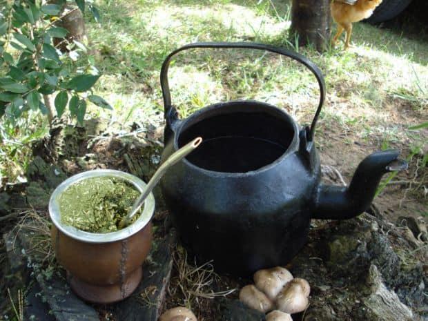bauturi braziliene Descopera bauturile traditionale braziliene! Chimarrao
