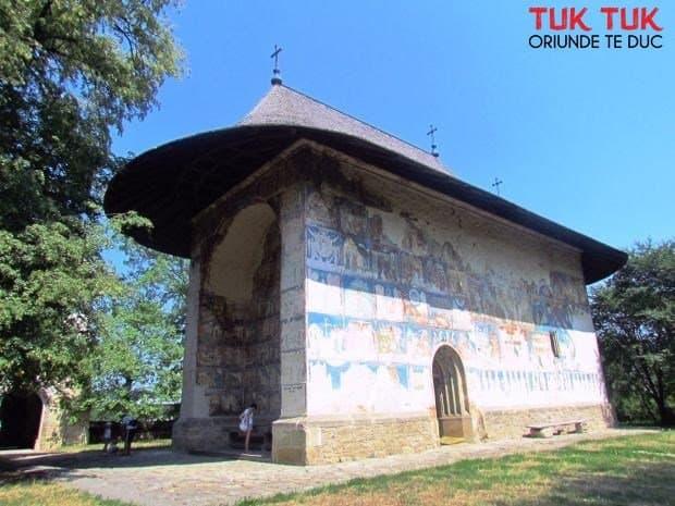 13 locuri de vazut in Bucovina arbore
