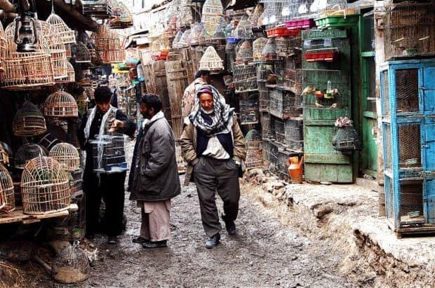 10 piete si magazine ciudate Ka Firushi Bird market