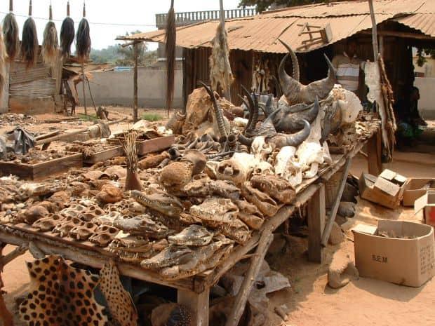 10 piete si magazine ciudate Lom   Voodoo Market