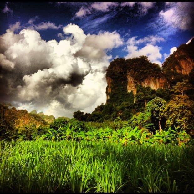 Elephant Hills Camp, Suratthani, Thailand. Photo: Mindy Terry