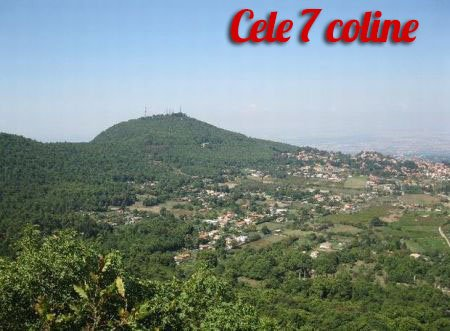 coline  Ghid Roma coline2