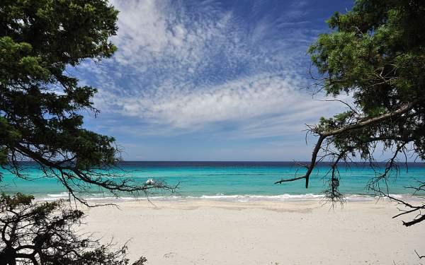 Nisipul plagii Palombaggia nu este cu nimic mai prejos de cel din Maldive, spre exemplu. Foto: Rene Vermunt
