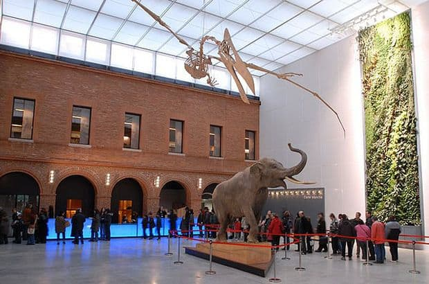 Muzeul de istorie naturala din Toulouse