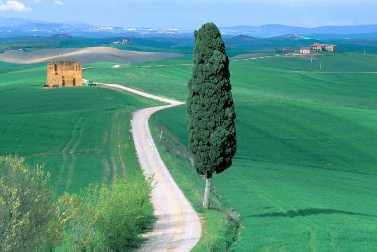 Pentru pacea sufletului: un drum cu masina in Toscana 20 de lucruri obligatoriu de facut in italia (2) 20 de lucruri obligatoriu de facut in Italia (2) toscana