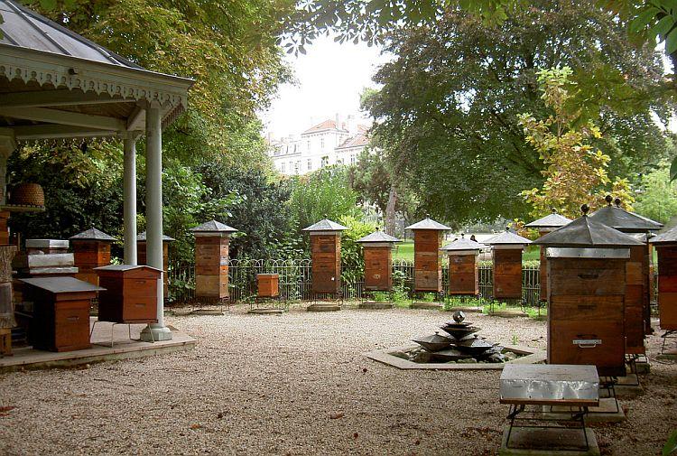 (Foto: L.N.) paris 10 locuri secrete de vizitat în Paris stupi jardins