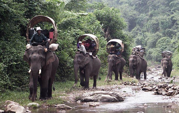 O plimbare cu elefantul: de neuitat! (Foto: www.theelephantcaravan.org) indochina In cautarea comorilor din Indochina elefanti