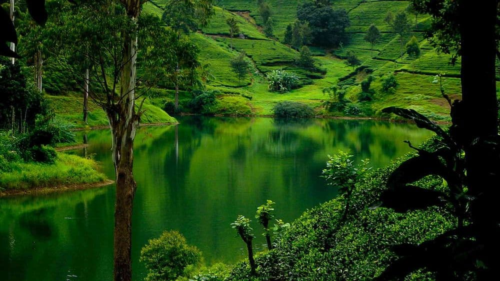 Serenitate la Nuwara Eliya. Foto: sunhill.lk sri lanka Sri Lanka - exotism si spiritualitate Nuwara Eliya