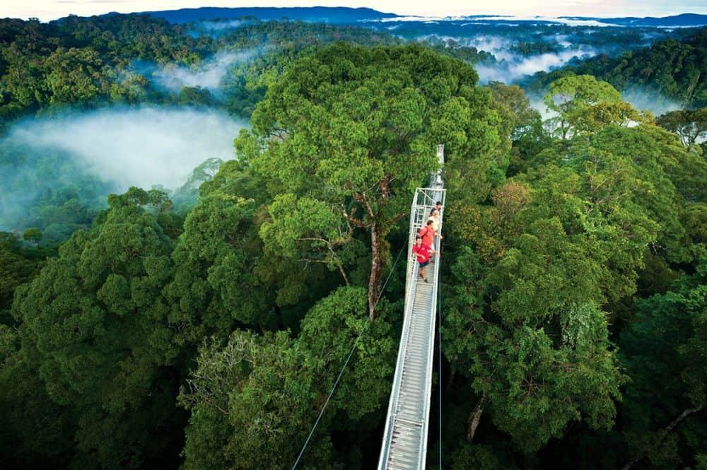 Parcul Național Monteverde. Foto: elitepropertiescr.com