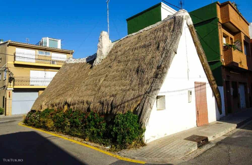valencia 10 lucruri de văzut și făcut în Valencia albufera 8