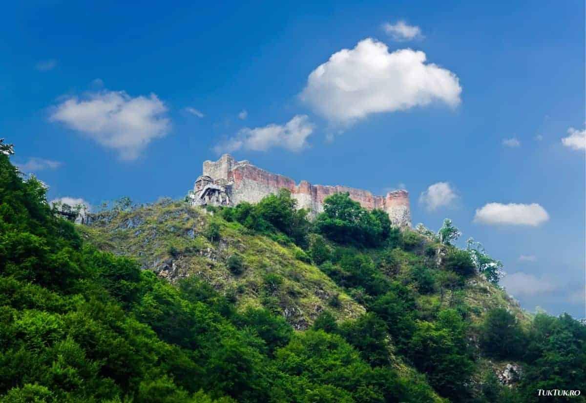 cetatea poenari Cetatea Poenari – 1480 trepte către cuibușorul de nebunii al lui Vlad Țepeș cetatea poenari 0