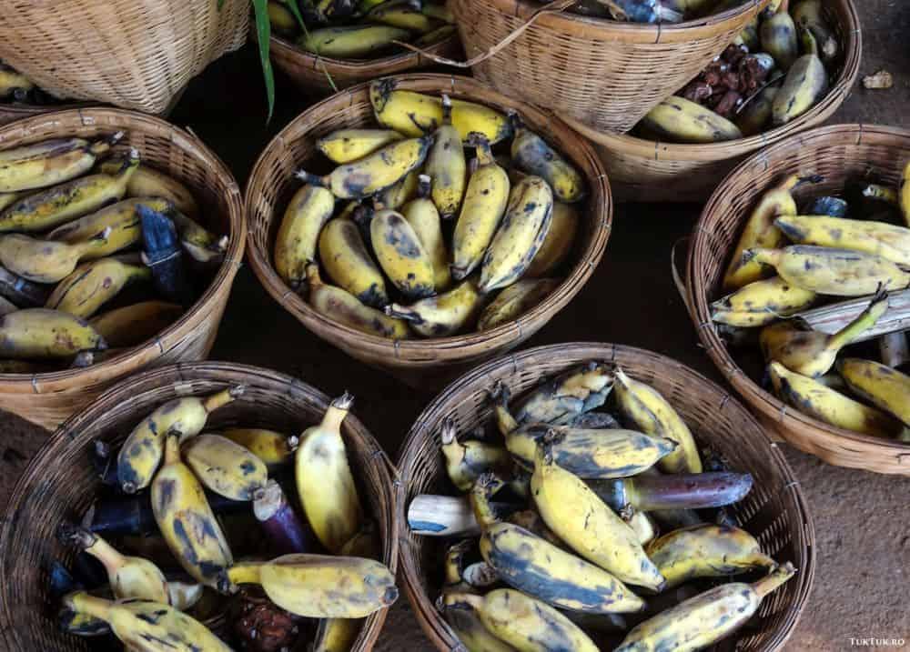 cos banane