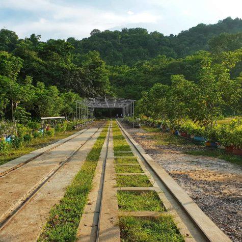 battambang train 1
