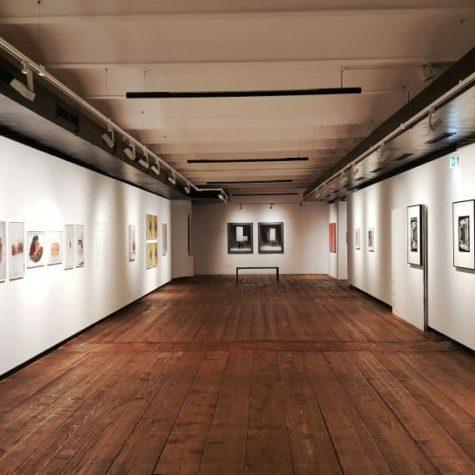 kunst museum vienna 7