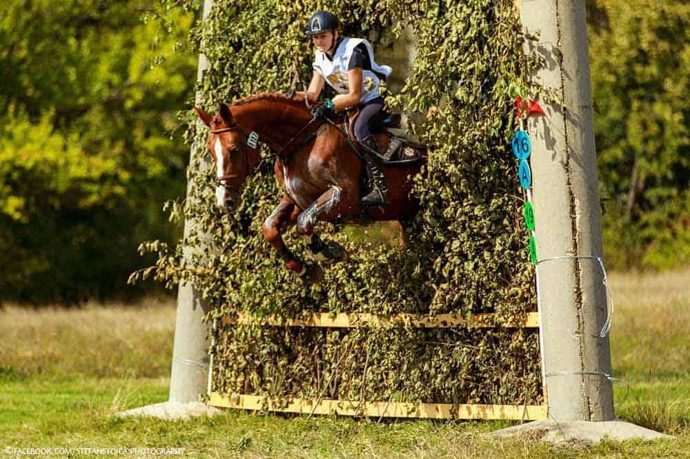 Karpatia Horse Show