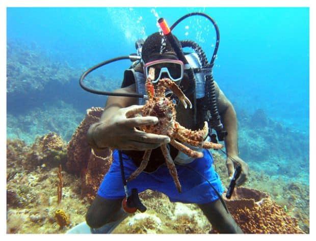 jamaica diving