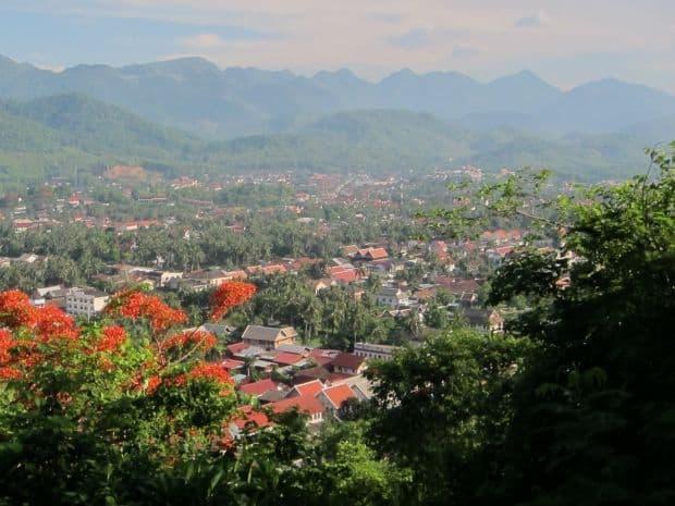 Atractia laosiana: Luang Prabang