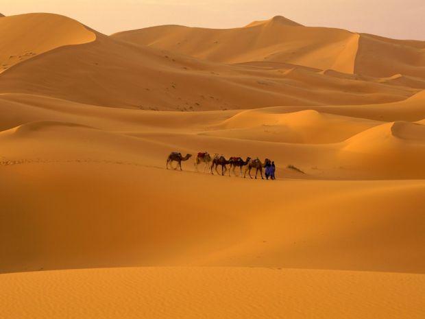 Desertul ofera mai mereu conditii dificile de fotografiat