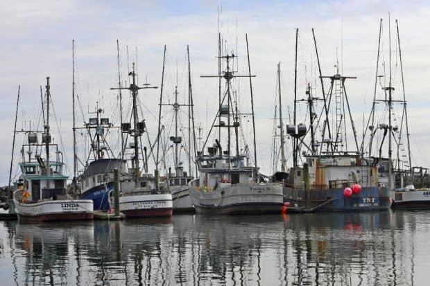 O alta optiune: barcile mai mici