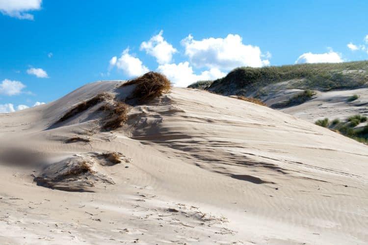 Dune in S³owiñski National Park