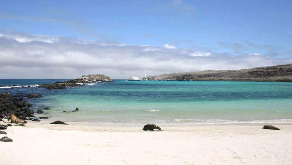 Tortuga Bay. Foto: surtrek.org