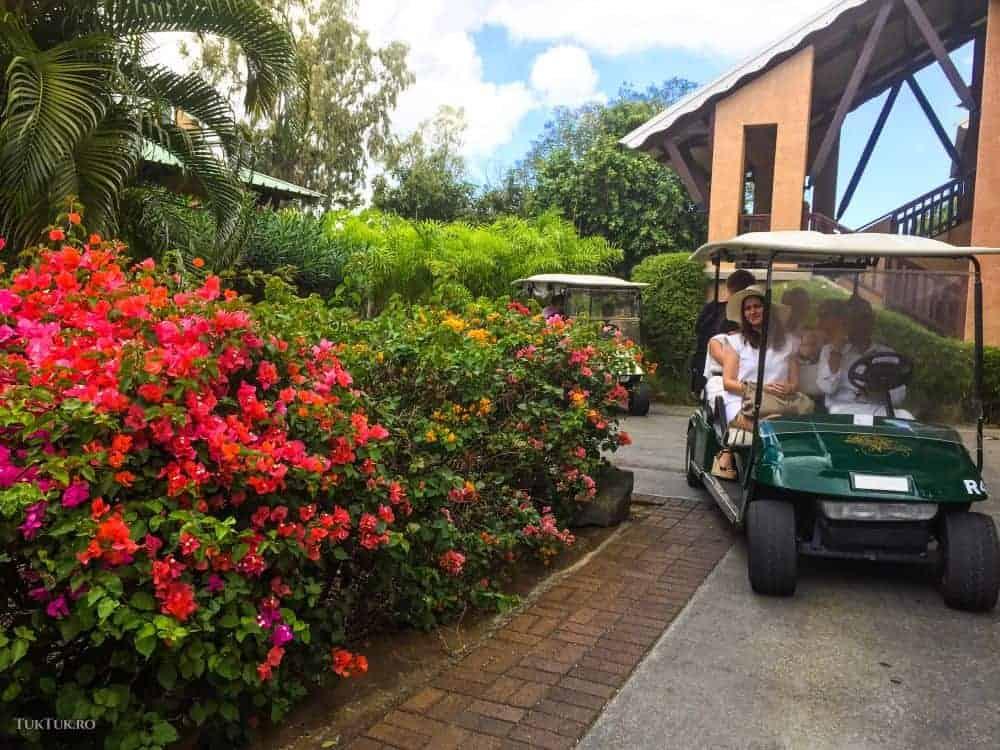Plimbarea cu buggy-ul prin resort - obligatorie