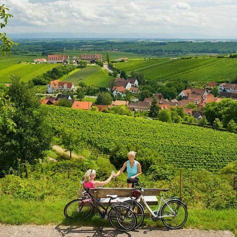 drumul vinului 2