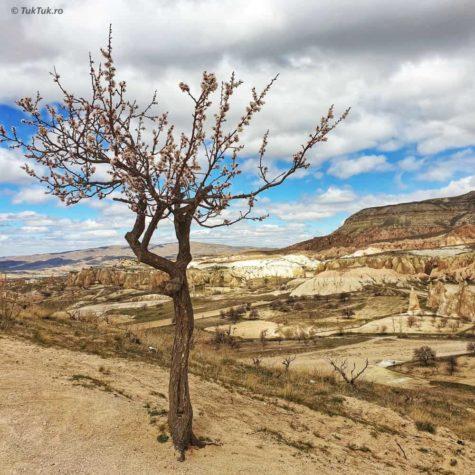 cappadocia 5