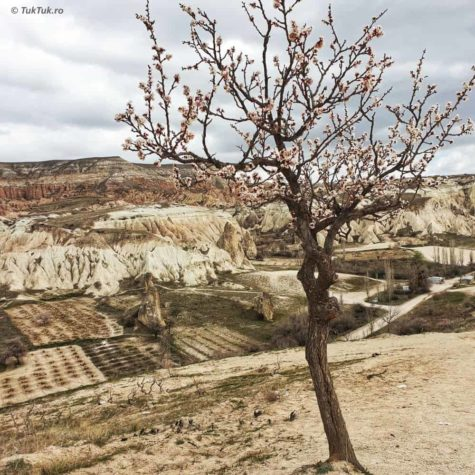 cappadocia 7